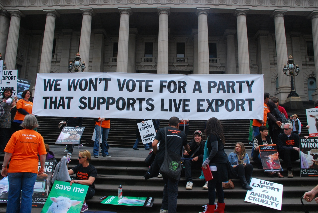 "ban live export Move to ban live exports gains key support, from liberal mp  ms henderson  said the live export of sheep to the middle east was ""inhumane""."